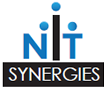 NIT Synergies LTD